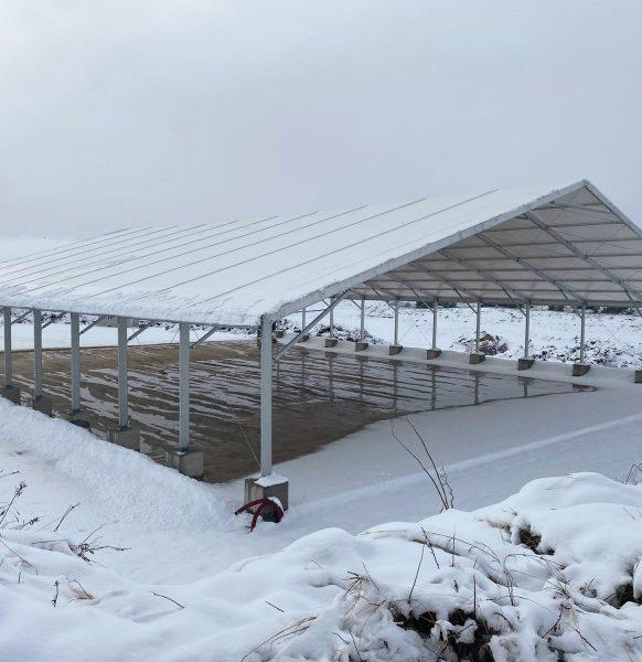 La nieve cubre nuestras carpas por todo el país
